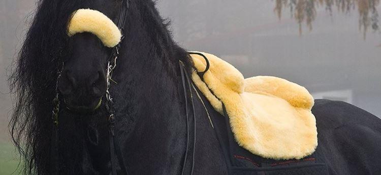 Ein Fellsattel auf schwarzem Pony